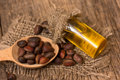 Cedar oil and nuts Royalty Free Stock Photo