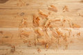 Cedar shavings raw natural on natural planks Stock Photos