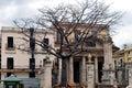 Ceiba Tree in old Havana Royalty Free Stock Photo