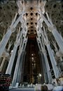 Ceiling inside Sagrada Familia Stock Photography