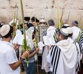 Celebrating sukkot at the western wall jerusalem israel september jewish men gathered wailing in order to celebrate feast of Royalty Free Stock Image