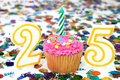 Celebration Cupcake with Candle - Number 25 Royalty Free Stock Photo