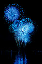 Celebratory bright firework in a night sky Royalty Free Stock Photos