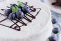 Celebratory cake with white frosting and fresh blueberries close up festivals and events selective focus image is tinted Stock Image