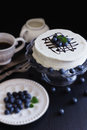 Celebratory cake with white frosting and fresh blueberries on a dark background festivals and events selective focus Stock Images