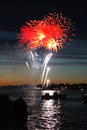 Celebratory firework bright in a night sky Royalty Free Stock Images