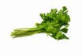 Celery fresh vegetable is isolated on white background Stock Photos