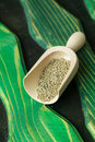 Celery seed in a wooden scoop Royalty Free Stock Image