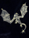 Celestial dragon in the starry skies Stock Photos