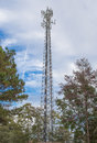 Cell tower tall in a heavily wooded area Royalty Free Stock Photos