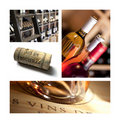 Cellar and wine tasting Royalty Free Stock Images