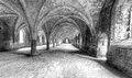 Cellarium the at foutains abbey ruins in mono hdr exposures august Royalty Free Stock Image