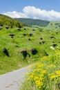 Sklepy, Slovensko