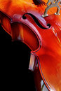 Cello Detail Royalty Free Stock Images
