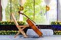 Cello at wedding Royalty Free Stock Photo