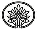 Celtic tree of life.