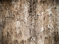 Cement plaster wall Royalty Free Stock Photo
