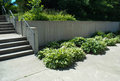Cement Steps And Walkway
