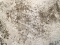Cement wall texture old stone surface Stock Images