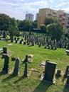 Cintorín v mesto