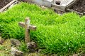 A cemetery cross Royalty Free Stock Image
