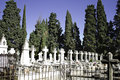 Cemetery with cypresses Stock Photos