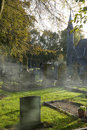 Cemetery in the Fall Royalty Free Stock Photography
