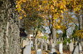 Cemetery grave monument cross colorful tree autumn Royalty Free Stock Photo