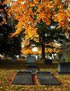 Cemetery Graves in Autumn Stock Images