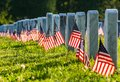 Veteran Cemetery with Flags Royalty Free Stock Photo