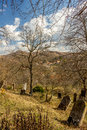 Cemetery from viseu village in romania Royalty Free Stock Images