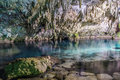 Cenote cho ha in quintana roo mexico is over meters deep underground with pristine underground river waters and decorated with Stock Image