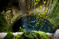 Cenote ill kill mexico the plant and the water in the hole Stock Image