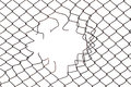 Center hole in the mesh wire fence Royalty Free Stock Photo