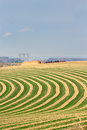 Center pivot irrigated farm field Royalty Free Stock Photo