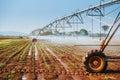 Center pivot sprinkler system watering corn shoots