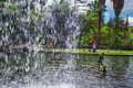 The central lake with waterfall in the Monte Palace Tropical Garden. Funchal, Madeira, Portugal Royalty Free Stock Photo