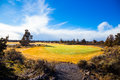 Central oregon golfbana Royaltyfria Foton