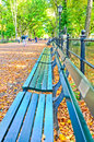 Central Park in autumn in New York Royalty Free Stock Photo