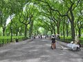 stock image of  Central Park Literary Walk