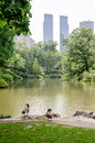 Central park manhattan new york city Stock Photo