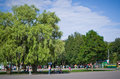 Central park named after belousov of culture and rest children birch grove green landscape tula russia Stock Image