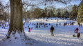 Central park new york city cityin winter after snow children sleding on hill Stock Photos