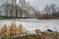 Central park new york city on a foggy day Royalty Free Stock Photo