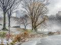 Central Park, New York City foggy morning Royalty Free Stock Photo