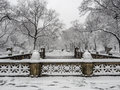 Central Park New York City, Manhattan during blizzard Royalty Free Stock Photo