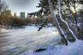 Central park new york city after snow storm Royalty Free Stock Photos