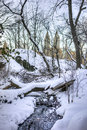 Central park new york city after snow storm Royalty Free Stock Photo