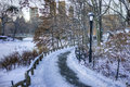 Central park new york city after snow storm Royalty Free Stock Images
