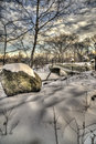 Central park new york city after snow storm in Royalty Free Stock Photos
